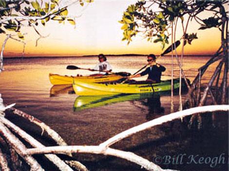 kayak_pic