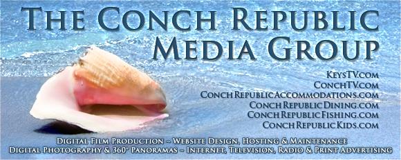 ConchColorHeader580