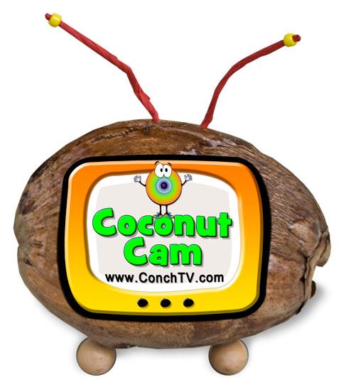 Coconut Cam